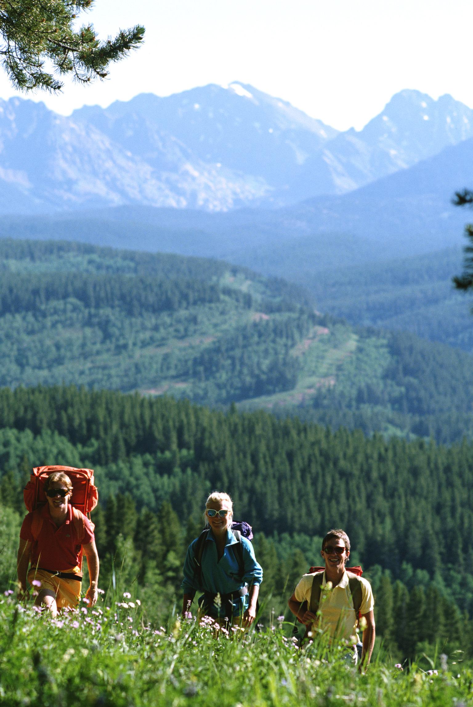 Escursioni a Folgaria: itinerari adatti a tutti