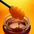 Vacanze a Folgaria: assaggiate il miele di montagna
